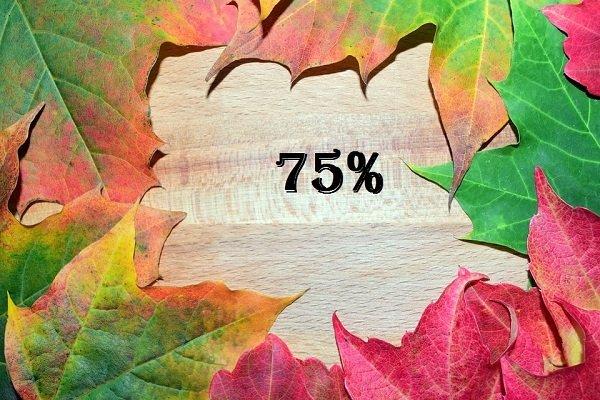 Invalidità 75%: agevolazioni