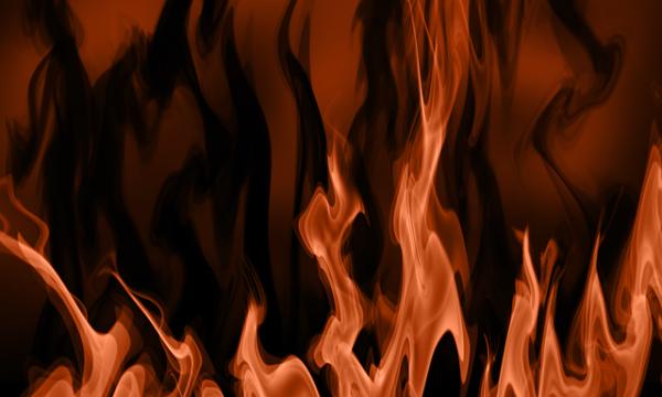 È vietato bruciare le potature?