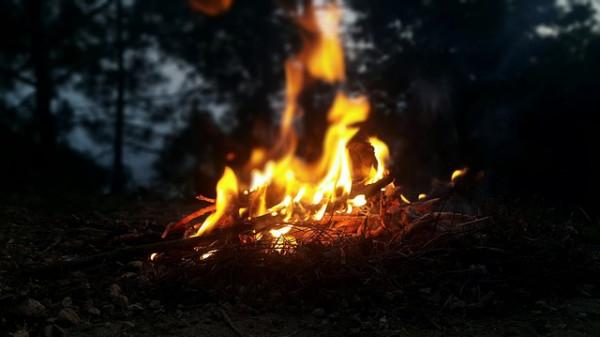 Sterpaglia: si può appiccare il fuoco sulla potatura?