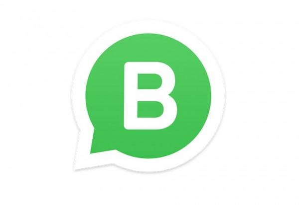 WhatsApp Business, cosa è e come si usa