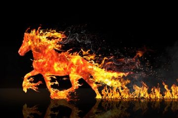 Furto e incendio: cosa copre?