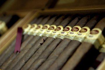 Licenza tabacchi: normativa, requisiti e funzionamento