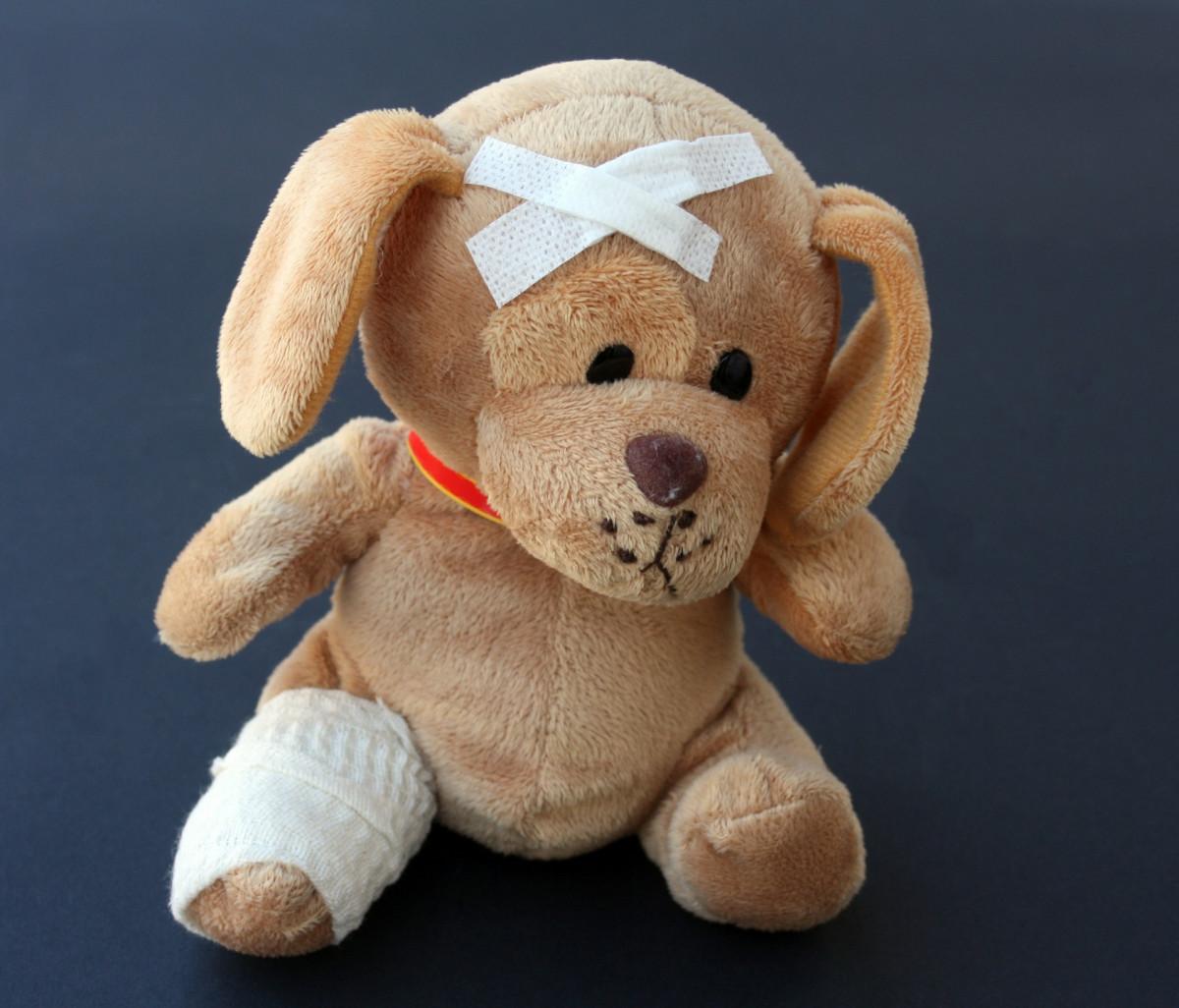 Pronto soccorso veterinario: come funziona?