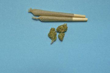 Spaccio marijuana: ultime sentenze