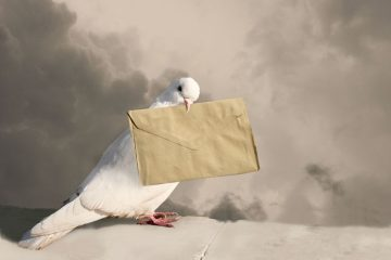 Le lettere dell'avvocato sono coperte da privacy?