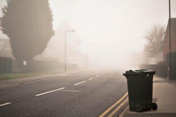 Rovesciare i cassonetti della spazzatura: quali rischi?