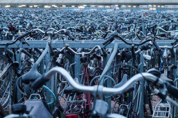 Mountain bike e bici elettrica: velocità massima consentita