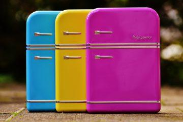 Calamite sul frigo: provocano il cancro?