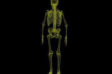 Invalidità osteoporosi: come ottenerla