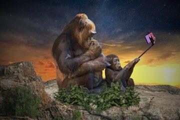 Selfie: è egocentrismo?