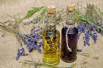 Erbe medicinali: la salute in giardino