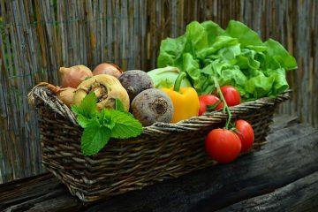 Educazione alimentare: cibo e salute