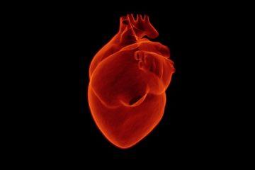 Il diabete e le malattie del cuore