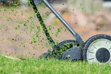 Ordine del sindaco di tagliare l'erba: che fare?