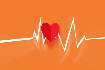 L'ecocardiografia fetale: se e quando farla