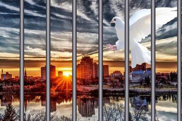 Restrizione della libertà personale: ultime sentenze