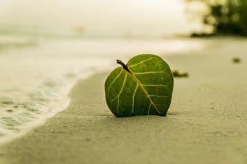 6 app rilassanti e antistress