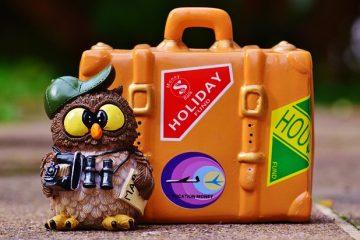 Responsabilità agenzia viaggi: ultime sentenze