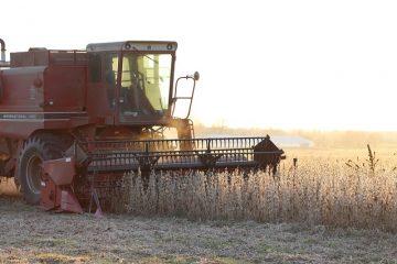 Busta paga agricoltura