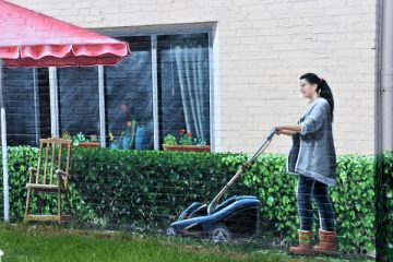 Come regolarizzare lavoratore domestico
