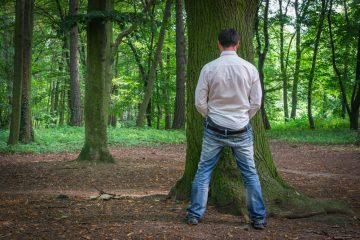Bisogno fisiologico in luogo pubblico: cosa si rischia?