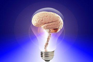 Patent box, tutte le informazioni