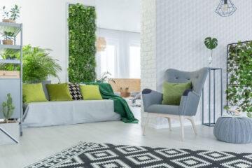 Piante d'appartamento: quali scegliere e come curarle