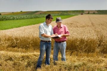 Prelazione agraria: ultime sentenze