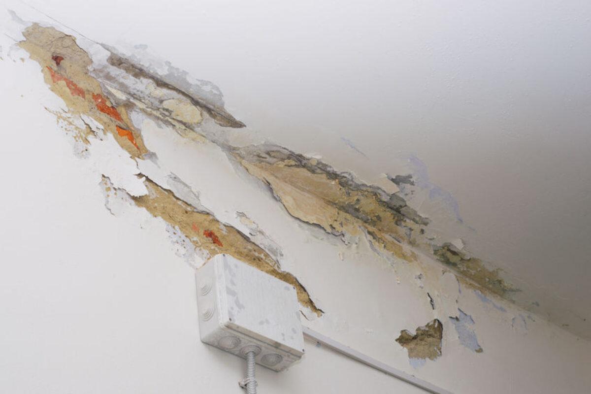 Muro Bagnato Cosa Fare come evitare che si formi la muffa sui muri