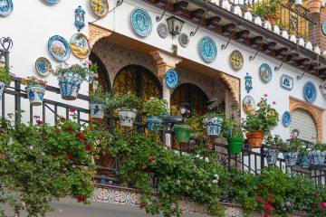 Piante da balcone: le più adatte per ogni stagione