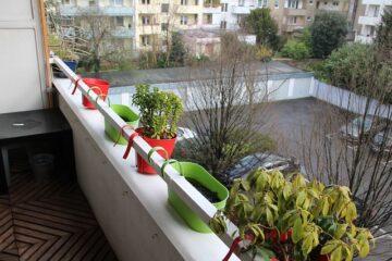 Bagnare le piante in condominio è reato?