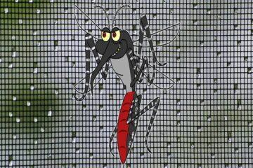 Si può avere la detrazione sulla zanzariera?