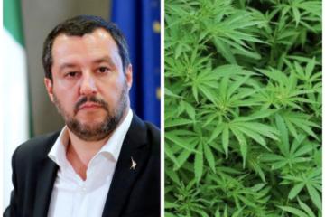 Salvini accusa i parlamentari: fanno uso di droghe