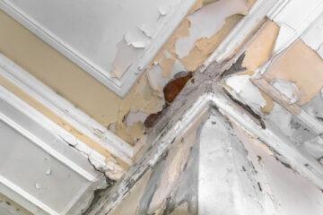 Come risolvere i problemi di umidità in casa