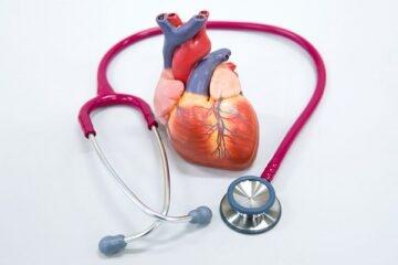 Come si può curare il cuore ferito da infarto?