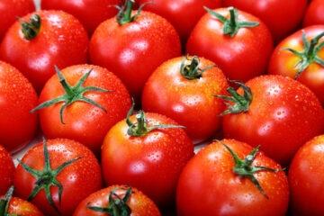 Pomodori: su produzione e vendita interviene il ministro