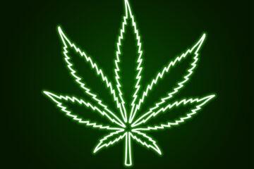 Manovra: cannabis light libera ma tassata