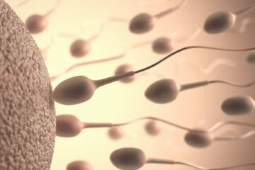Infertilità: scoperta causa finora inspiegabile