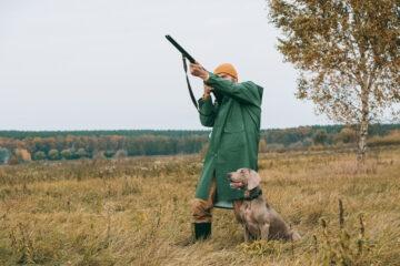 Posso cacciare nel mio terreno?