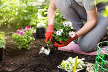 Malattia: posso fare giardinaggio?