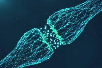 Amputazioni e malattie neurodegenerative, la nuova scoperta