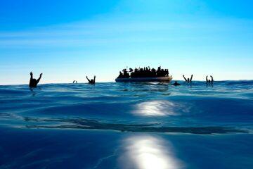 Migranti: Di Maio ferma i fondi alla Tunisia