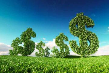 Una valanga di assunzioni nella green economy