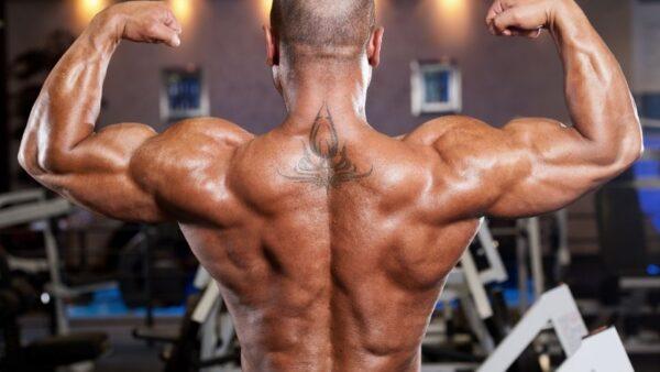 Anabolizzanti Doping E Palestre 7 Cose Da Sapere