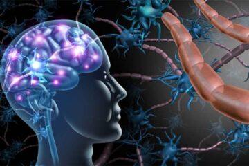 Covid: i danni neurologici sui pazienti non gravi