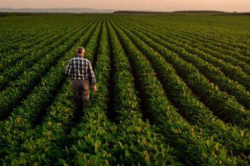 Quando viene pagata la malattia agricola?