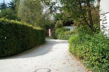 Distanze dalla strada di siepi, alberi e muri