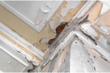 Infiltrazioni: la responsabilità del condominio