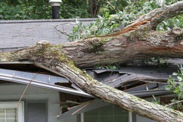 Perizia per danni in casa: come richiederla?